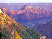 Grand Canyon National Park Vacations